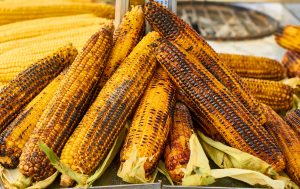 grilled corn on cob